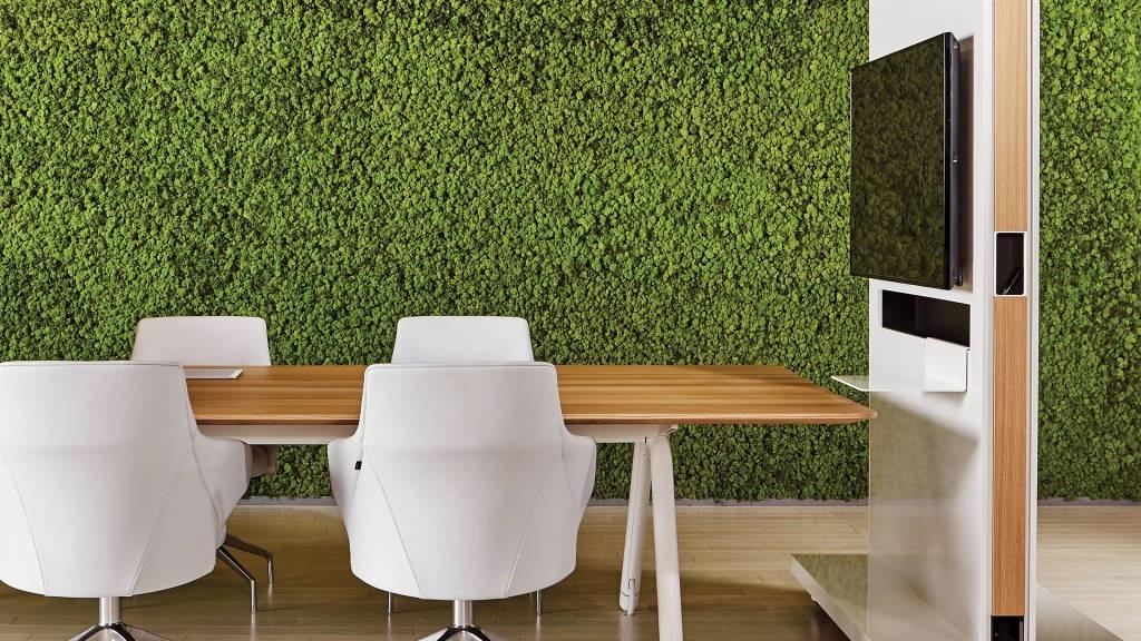¡Green all over the place! El diseño Biofilico y el bienestar.